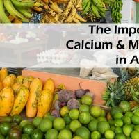Importance-of-Calcium-&-Magnesium-in-Agriculture